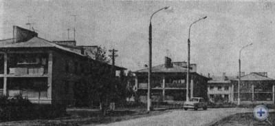 Одна из улиц села Высокого Михайловского района. 1979 г.